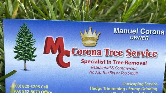 Corona Tree Services Landscaping Llc 14 Recommendations