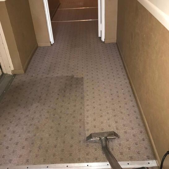 a pristine carpet cleaning mount