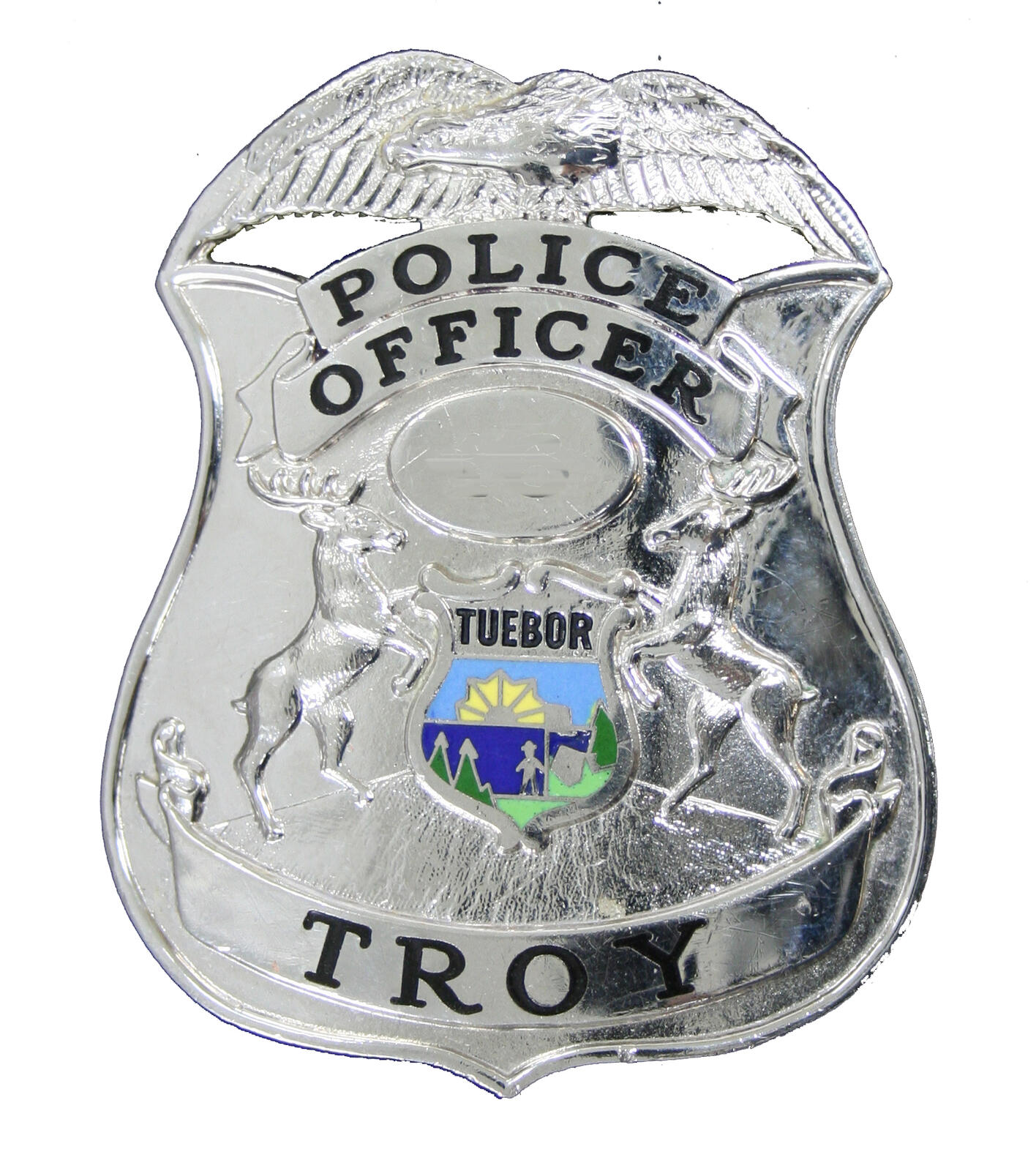 Troy Police Department - 40 Crime and Safety updates &mdash