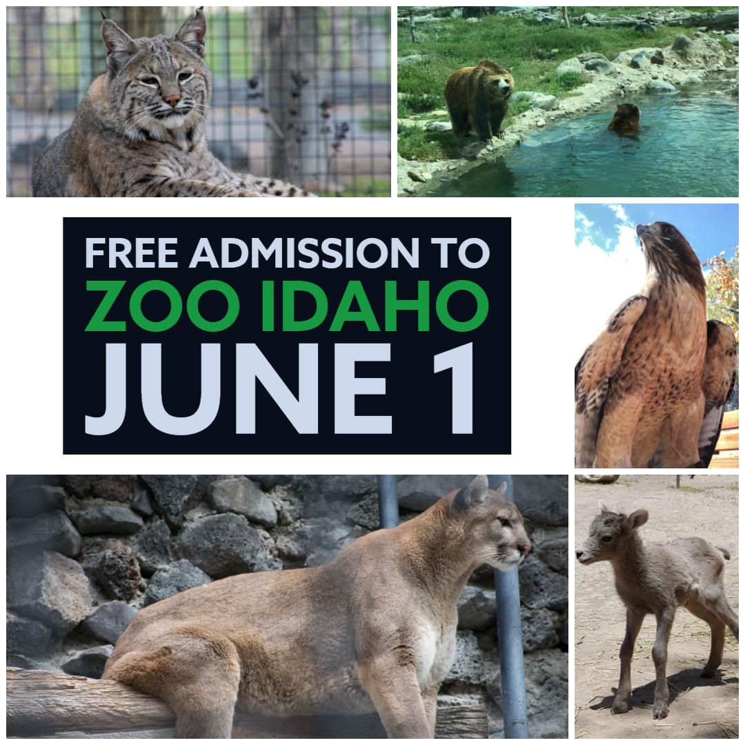 Free Admission to Zoo Idaho June 1 (City of Pocatello