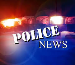 Police Department Weekly Activity Report (Reedley Police