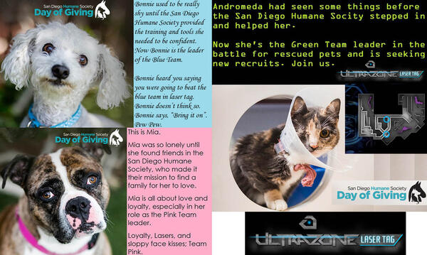May 20 · Laser Tag with the San Diego Humane Society for Day