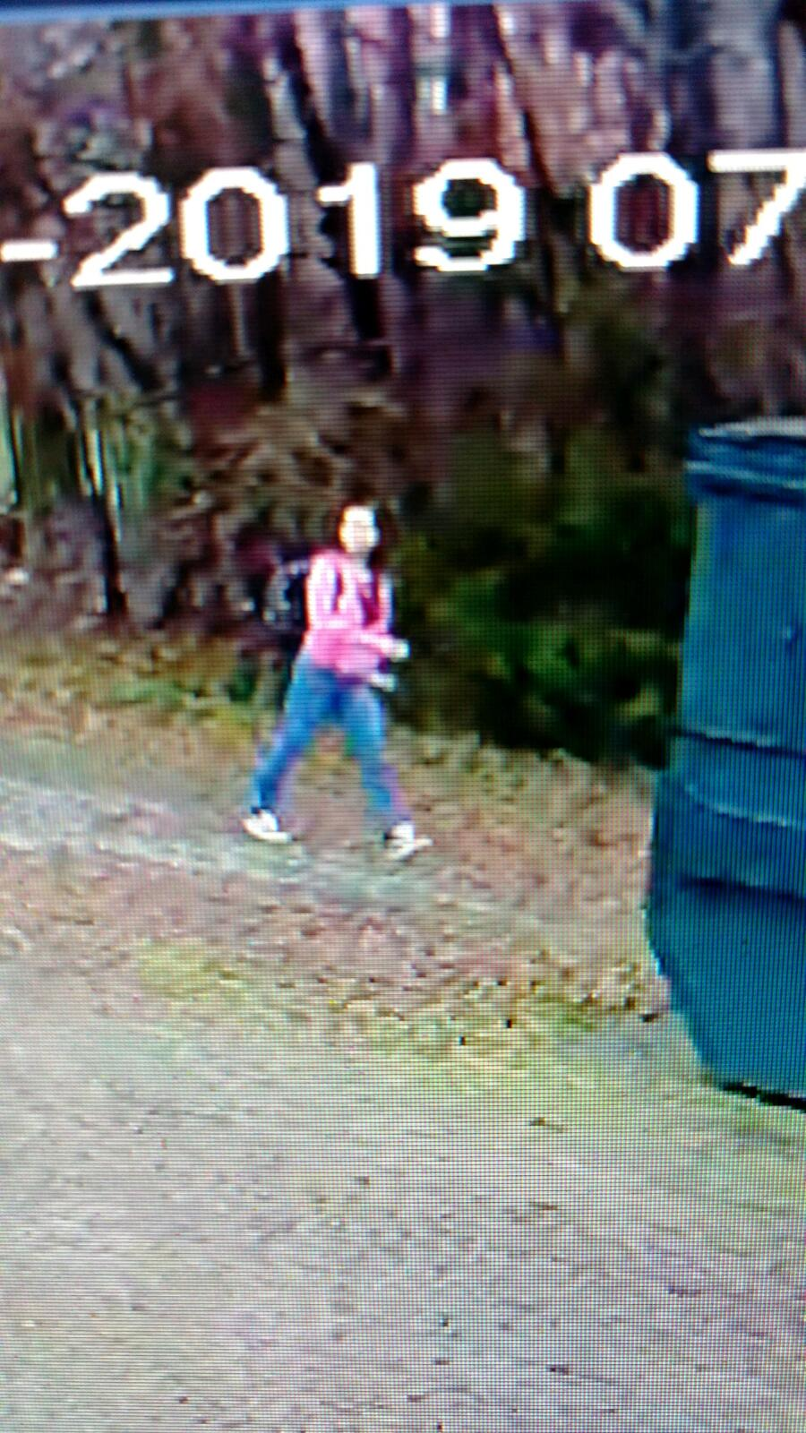 Seeking runaway juvenile from southern Guilford County