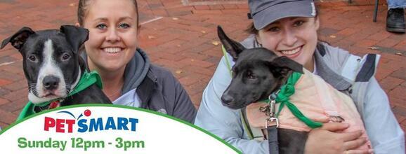 Aug 4 · Lucky Dog Animal Rescue Adoption Event! — Nextdoor