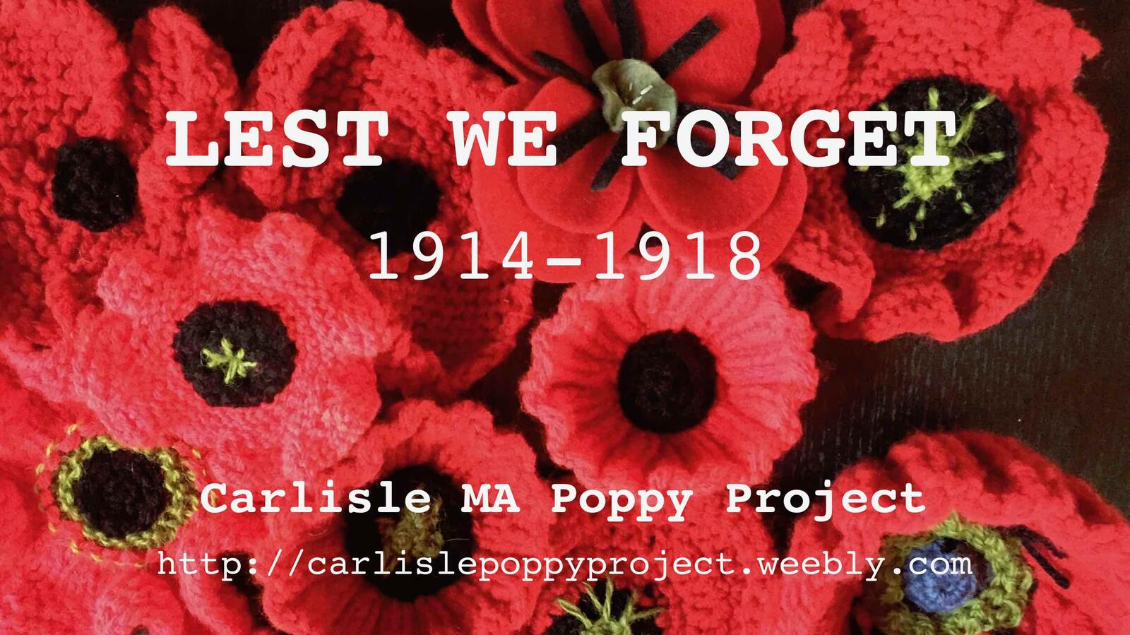 Nov 2 Carlisle Poppy Display In Remembrance Of The Centenary Of