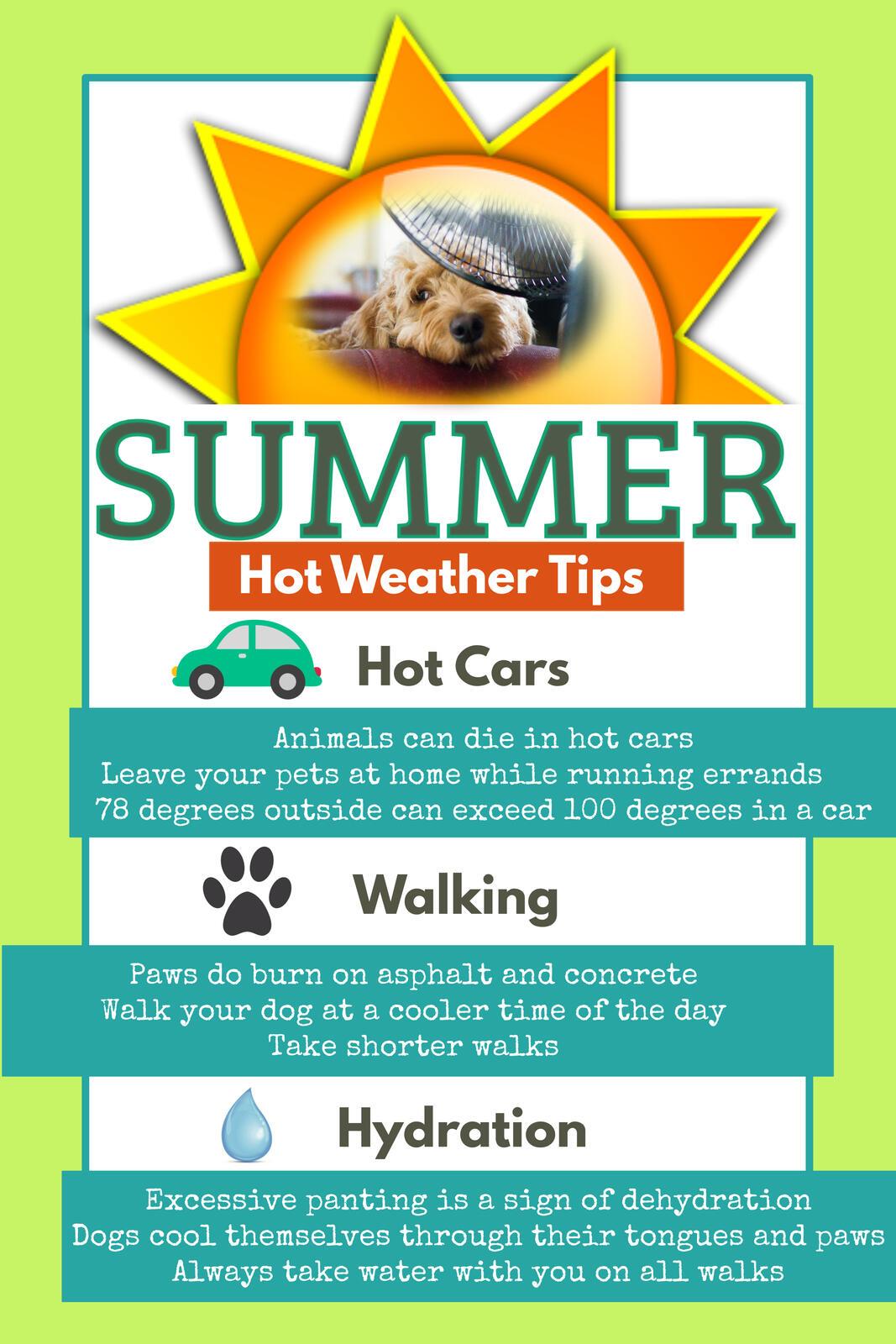 Summer Safety Tips (Pasadena Police Department) &mdash