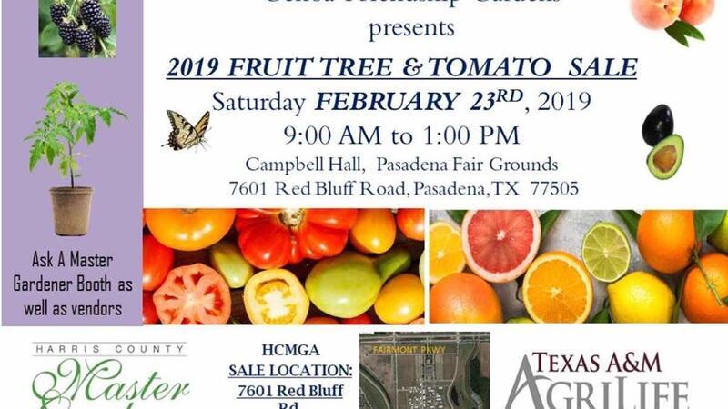 Feb 23 Fundraising For Harris County Master Gardener Association