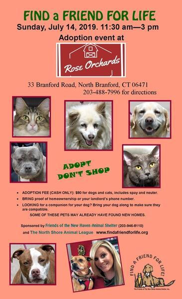 Jul 14 · New Haven Animal Shelter adoption event — Nextdoor