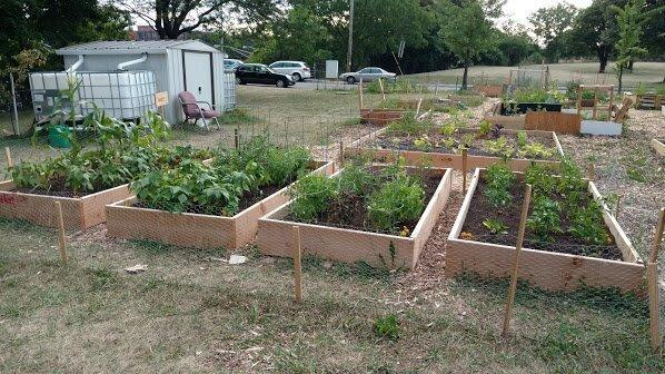 Apr 7 · Volunteer Day at Broadway Community Garden! — Nextdoor