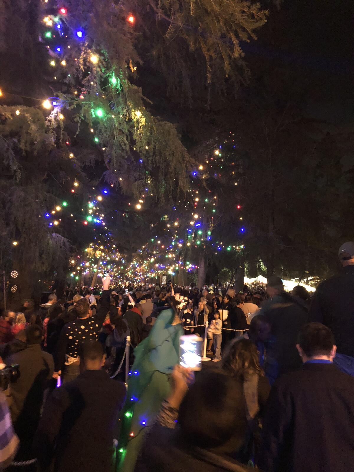 christmas tree lane lights are now turned on los angeles county sheriff nextdoor