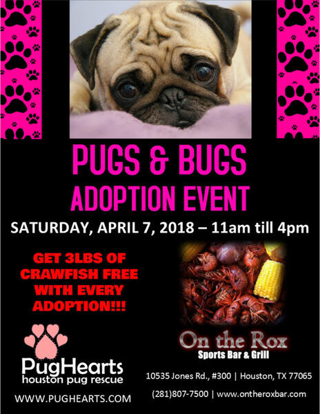 Apr 7 · Pugs and Bugs Adoption Event — Nextdoor