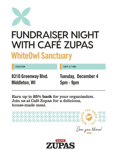 Dec 4 Fundraiser At Cafe Zupas For Whiteowl Animal Sanctuary