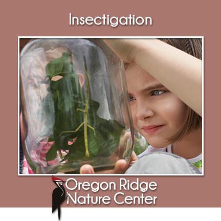 Jul 22 Insectigation Nextdoor
